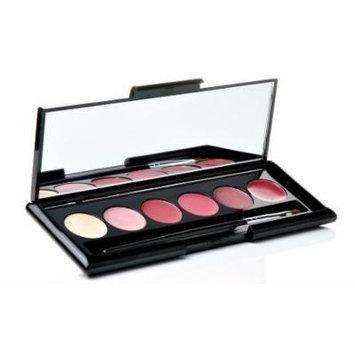 Lunar Lip Color Kit, Shimmer Powder Brush & Makeup Remover Cleansing Cloths