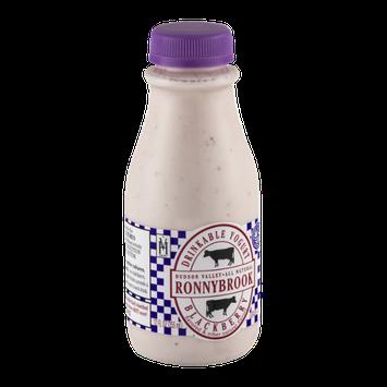 Ronnybrook Farm Drinkable Yogurt Blackberry