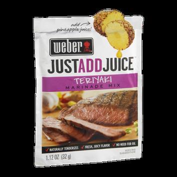 Weber Just Add Juice Marinade Mix Teriyaki