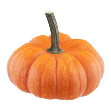 Pumpkin Mini Jumbo