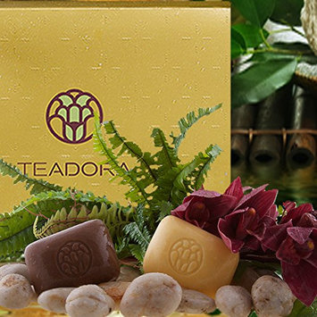 Teadora 5 Piece Perfect Pair Exfoliating/Toning Bar Body Scrub Gift Box