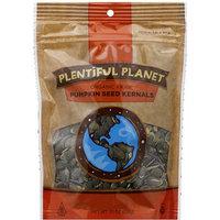 Plentiful Planet Raw Organic Pumpkin Seed Kernels, 10 oz, (Pack of 6)