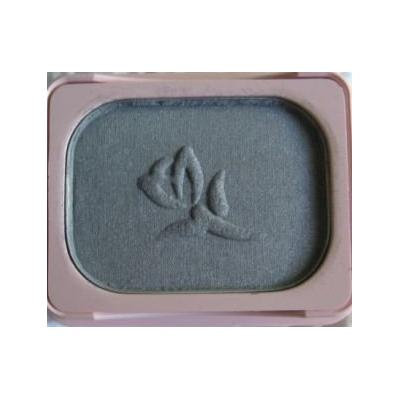 Mary Kay Powder Perfect Eye Color Polished Pewter