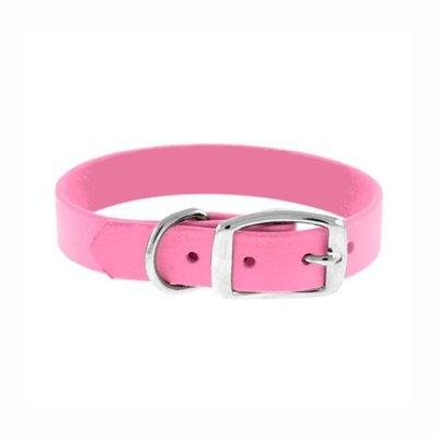 The Perfect Leash® The Perfect Leash Perfect Polyurethane Dog Collar