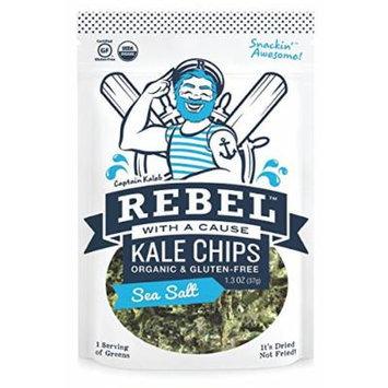 Rebel With A Cause Organic Kale Chips Sea Salt -- 1.3 oz