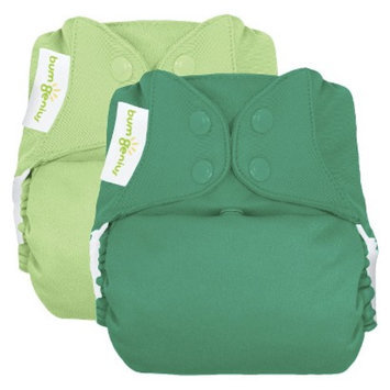 Bum Genius bumGenius Freetime All-in-One Snap Reusable Diaper 2 Pack -