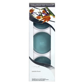 Pacific Trade Chesapeake Bay Fruit Warmer Scents TRQ