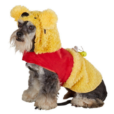 DisneyA Pooh Costume