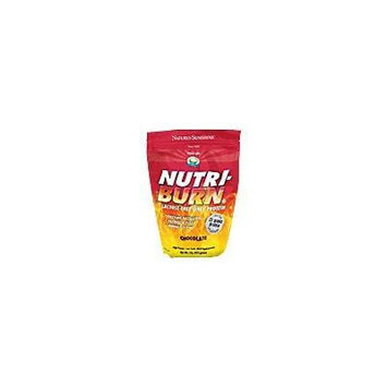 Nature's Sunshine Nutri-Burn Chocolate 915 g Each Helps Boost Energy Levels (Pack of 2)