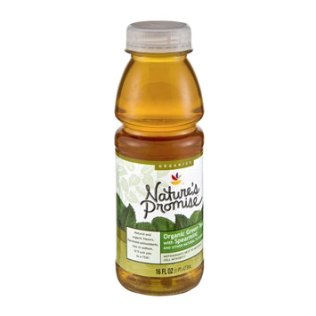 Nature's Promise Organic Green Tea with Spearmint