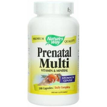 (2 Pack) Nature's Way Prenatal Multi Vitamin & Mineral, 180 count each