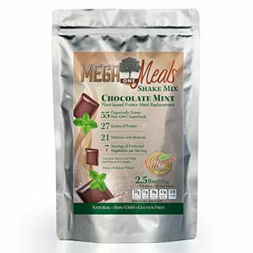 MegaOne Chocolate Mint Meal Replacement Shake Powder - Great Taste Vegetarian Protein - Hunger Control, Energy, Diet Weight Loss, Hiking, Workout - With Fermented Superfoods
