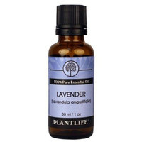 Plantlife Natural Body Care Lavender 100% Pure Essential Oil - 30 ml