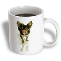 Recaro North 3dRose - Dogs Chihuahua - Long Hair Chihuahua - 11 oz mug