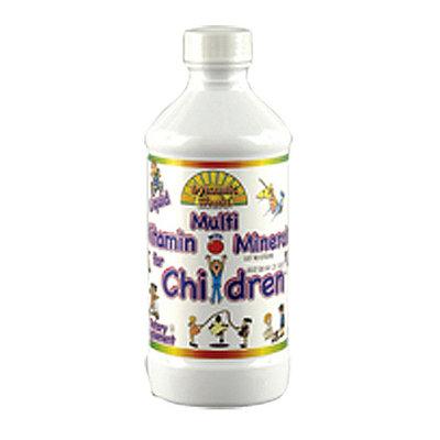 Dynamic Health Multivitamin With Minerals Liquid Supplement For Children