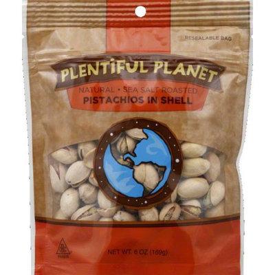 Plentiful Planet Nut Pistachio Rs Inshell Bag 6 OZ (Pack of 6)