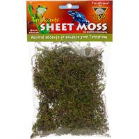 T-Rex Terra Accents Sheet Moss