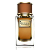 Dolce & Gabbana Velvet Exotic Leather/1.6 oz. - No Color