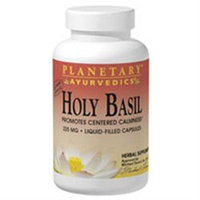 Planetary Herbals, Ayurvedics Holy Basil 2 fl oz