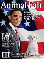 Kmart.com Animal Fair Magazine - Kmart.com