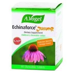 Bioforce USA A.Vogel - Echinaforce Junior Children's Chewable Orange.