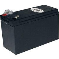 Tripp Lite TRIPP LITE Battery Cartridge APC SU420 200-500VA RBC2A