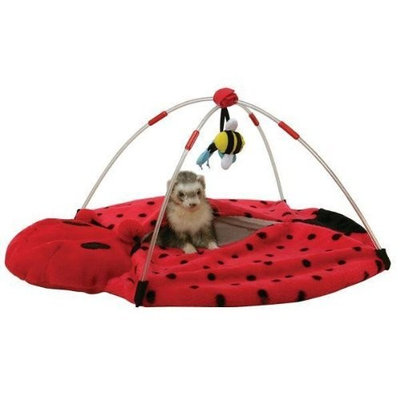 Marshall Pet Products Marshall Ferret Bed Bug Play Center