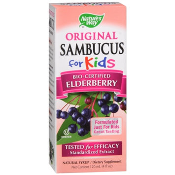Nature's Way Sambucus for Kids Dietary Supplement Syrup