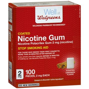Walgreens Nicotine Replacement Gum 2Mg, Cinnamon, 100 ea