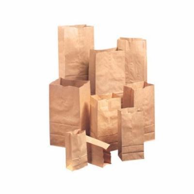 General 4 Kraft Paper Bag in Brown (Set of 2)