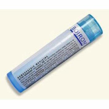 Phosphoricum Acidum 1M Boiron 80 Pellet