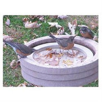 Songbird Essentials SE6017 Bird Bath Raft