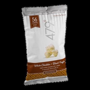 479˚ Artisan Popcorn White Cheddar + Black Truffle