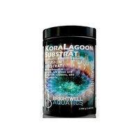 Brightwell Aquatics ABAKSUB1400 Kora Lagoon Substrate Filter Media for Aquarium, 3-Pound