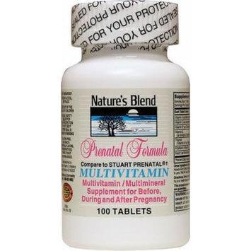 Nature's Blend Multivitamin Prenatal Formula 100 CT (PACK OF 3)