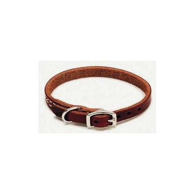 Coastal Pet Products COASTL PET 020WCOA210312 Latigo Dog Collar