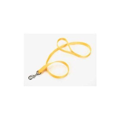 Coastal Pet Products DCP406RED Nylon Lead