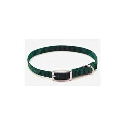 Coastal Pet Products CO03461 .63 in. Nylon Web Collar Red
