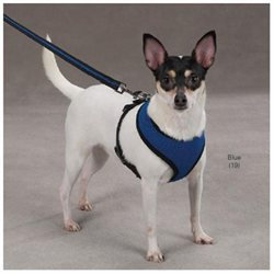 Casual Canine Mesh Dog Harness Medium Blue