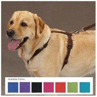 Zack & Zoey Nylon Dog Harness Size: 14-20