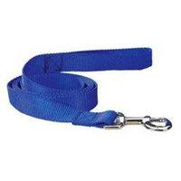Pet Pals TP819 40 19 Guardian Gear Nylon Lead 4 Ft x .62 In Blue