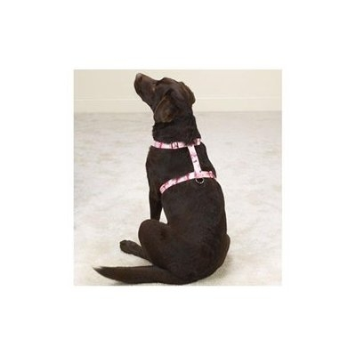 Guardian Gear Camo Dog Harness 28 to 36in Blue