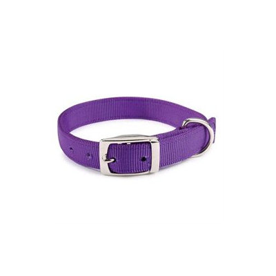 Guardian Gear Brite Dog Collar 18in Blue