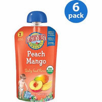 Earth's Best Puree Organic Peach & Mango 4oz - Stage 2 Baby Food (Pack of 6)