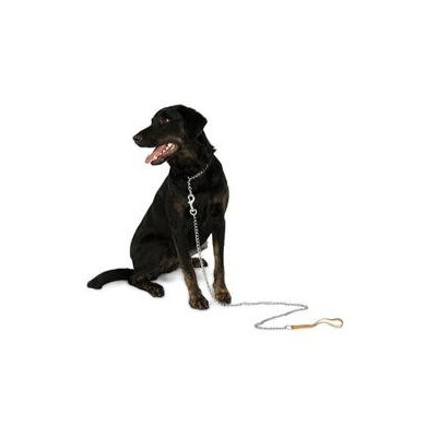 Petmate Aspen Pet 82118 18-inch x 2mm Light Weight Mighty Link Chain Collar