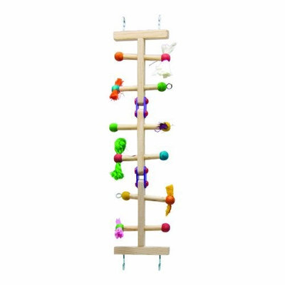 Super Pet Kaytee Avian Forage-N-Play Ladder