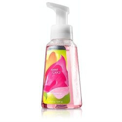 Anti-bacterial Gentle Foaming Hand Soap
