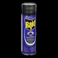 Raid Flea Killer Carpet Room Spary Reviews Find The Best Pest Control Influenster