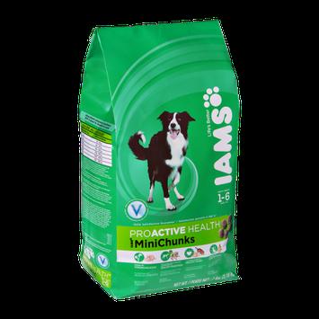Iams Proavtive Health MiniChunks  Adult Dog Food