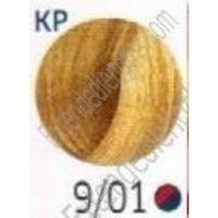 Wella Color Touch Multidimensional Demi-Permanent Color 1:2 9/01 Very Light Blonde/Natural Ash